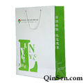 Elegant Branded Paper Bag with Fancy Logo Design