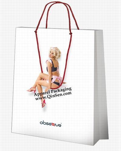 Fancy Design Idea for Lingerie Shopping Bag - PX000112-Lingerie Bag ...
